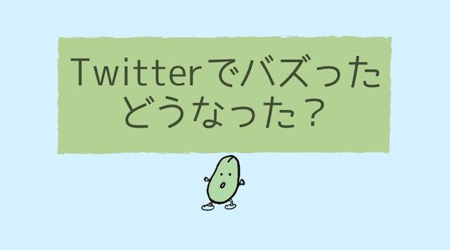 Twitter初心者がバズるとどうなるの?プチバズり体験談!